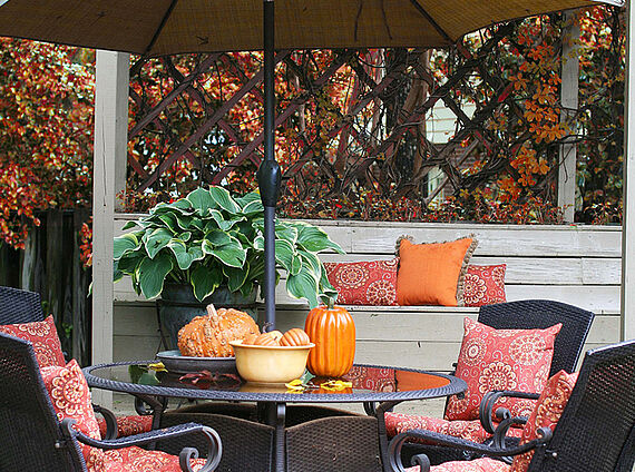Autumn look for your terrace
