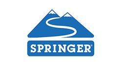 Springer 290x156